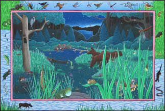 Wetland at night illustration from Before & After